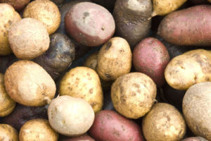 Potatoes - Mixed potato assortment