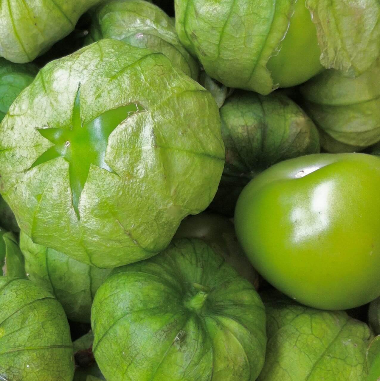 recipe: tomatillo in english [3]