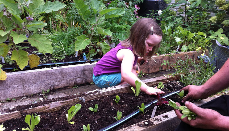Fall vegetable planting -with danika