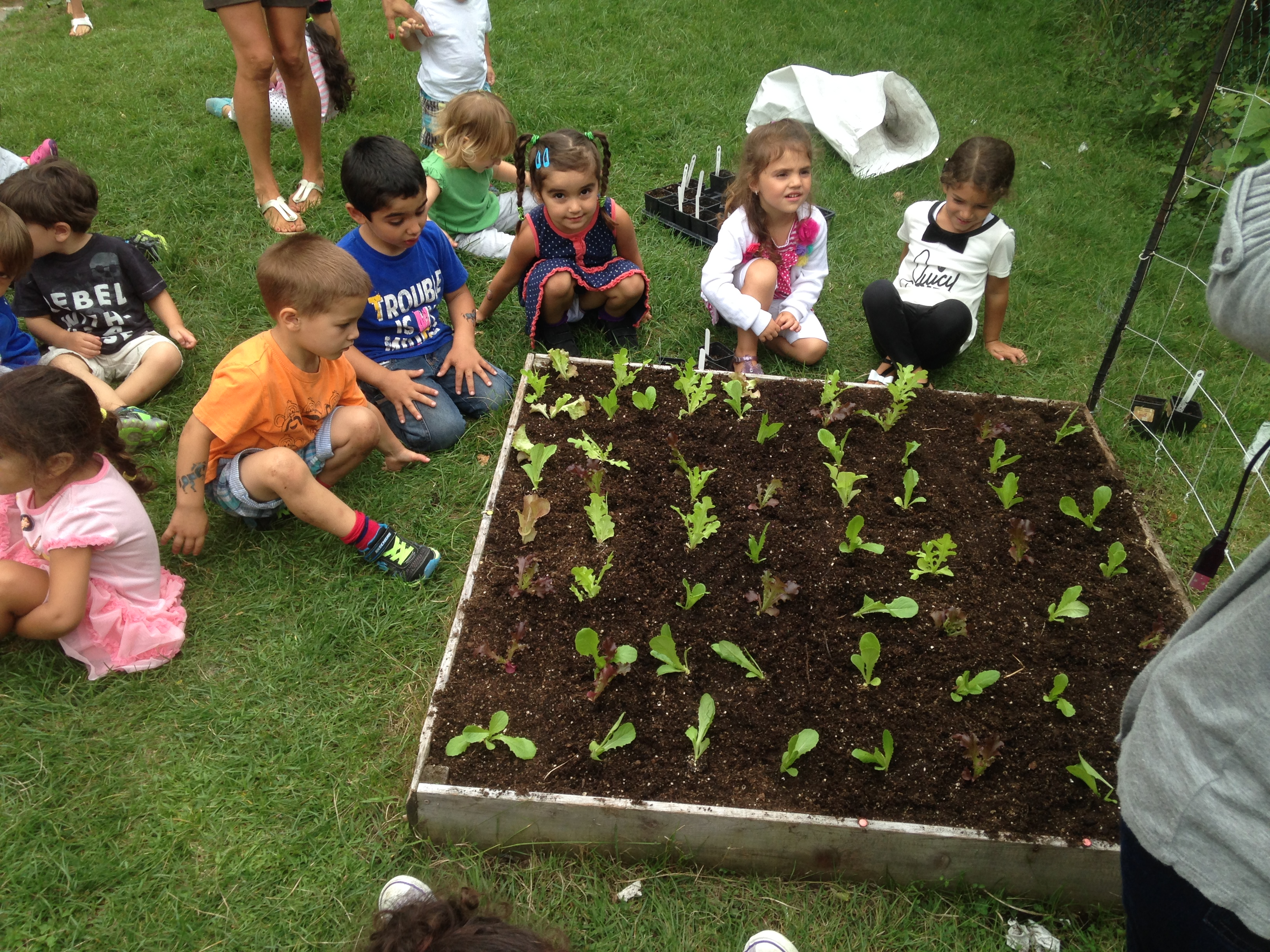 kids love to dig in the dirt school vegetable gardens - Vegetable Garden Ideas For Kids